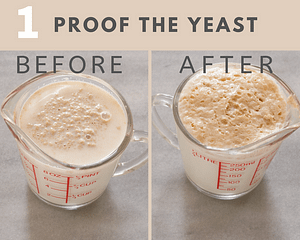 how to proof the yeast before and after